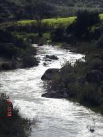 rio guadalete