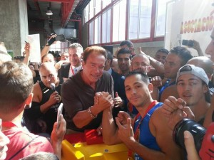 Arnold 1